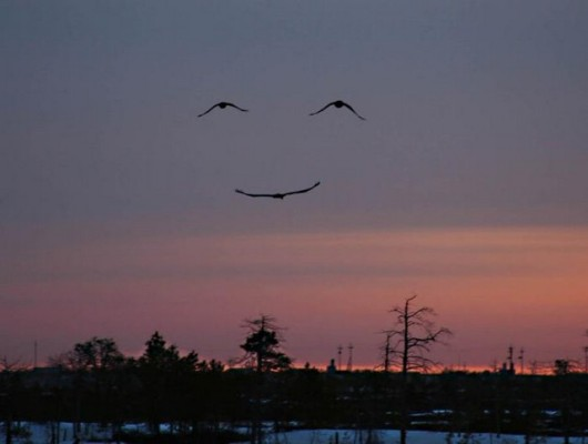 Love this picture of a smile in the sky  Learning and messages come all sorts of ways
