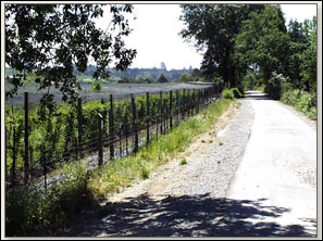 One reason we were so successful is the beautiful walking trail we were able to walk.