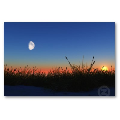 https://henrykh.files.wordpress.com/2011/01/sunrise_and_moon_on_a_cattail_beach_poster-p228963036366444611tdcp_400.jpg